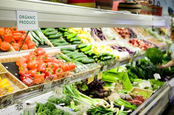 Food Retailing Industry